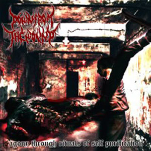 Down From The Wound – Agony Through Rituals Of Self Purification